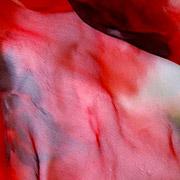 Silk Painting Workshops byJill Kennedy