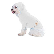 Doggie Baby Rib Hooded T-shirt With Pouch Pocket (#DHWP)