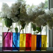 Natural Dye Extract Kit - Aquarelle Liquid