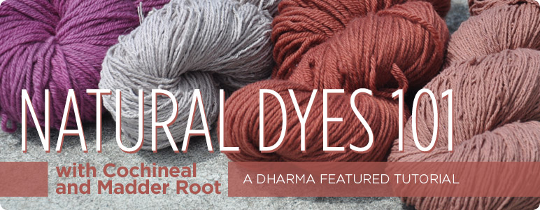 natural dyes 101 with cochineal and madder root: a dharma featured